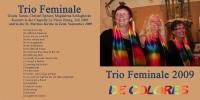 booklet_trio_2009